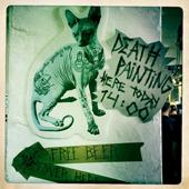 catsw